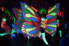 Tancerki katowice samba katowice kankan pokaz tańca katowice - 3