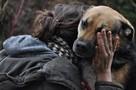 Mały - pies z łańcucha, kochany, łagodny, towarzyszki ADOPCJ - 5