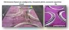 Pranie dywanów tapicerki meblowej samochodowej skórzanej myj - 8