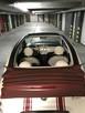 Fiat 500 C Kabriolet Benzyna/LPG - 3
