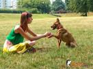 SKUTECZNE szkolenie Twojego psa, cała Wawa! - 3