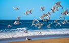 Noclegi urlop wypoczynek nad morzem
