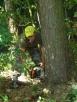 Usługi Ogrodniczo -Porządkowe Podkowa Leśna