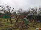 Sprzątanie ogrodów-przycinanie, pielęgnacja i wycinka drzew - 1