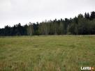 Działka rolna - 1,5 km od jeziora Wigry Nowinka
