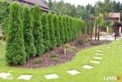 Urządzanie i pielęgnacja ogrodów Olsztyn - 2