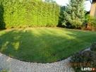 Firma ogrodnicza ogrody Gardens usługi ogrodnicze aranżacja - 2