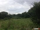 Działka rekreacyjna z siedliskiem położona 35 km od Pniewy