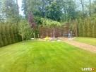 OGRODNIK ,ogrodnictwo,usługi ogrodnicze ,pielęgnacja zieleni - 5