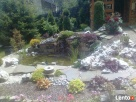 OGRODNIK ,ogrodnictwo,usługi ogrodnicze ,pielęgnacja zieleni - 4