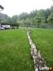 Wycinka drzew, gałęzi usuwanie Wieliczka Wieliczka