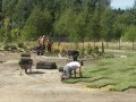 układanie kostki brukowej, zakładanie ogrodów, Mazowieckie - 8