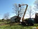 Wycinka drzew Łódź, przygotowanie terenu pod budowę