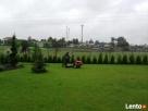 Pielęgnacja ogrodów, wycinki i przycinanie drzew i krzewów - 3