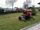 Pielęgnacja ogrodów, wycinki i przycinanie drzew i krzewów - 4
