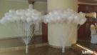 Balony na wesele z dowozem najlepiej na Śląsku - 6