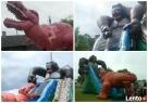 King Kong - Dionizos Wynajem zjeżdżalnia, Dmuchańce, festyn Działdowo