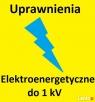 Uprawnienia elektryczne do 1 kV elektryk energetyczne - 1