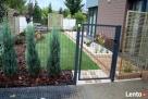 Ogrody z sercem i pasją - kompleksowe zakładanie ogrodów