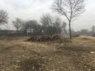 Wycinka Drzew Miechów Likwidacja Pni Mulczowanie