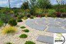 Projektowanie i zakładanie ogrodów -całe PODKARPACKIE! - 1