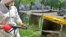 Fresh-Maker - Czyszczenie Zsypów na Śmieci