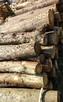 Drewno Opałowe