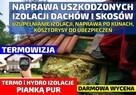 Zwalczanie kuny domowej Naprawy zniszczona izolacji Rzeszów