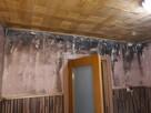 Profesjonalne usuwanie pleśni i grzybów ze ścian - 1