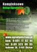 Urządzanie ogrodów ogrodyOlsztyna.pl - 2