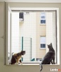 Zabezpieczanie balkonów / Siatka dla kota / Siatka balkonowa Kraków