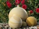 Kule kamienne - piaskowiec, kamień naturalny - 5