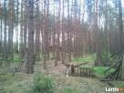 Działka 5200m 30km od Warszawy Mińsk Mazowiecki