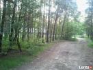 Działka 5200m 30km od Warszawy - 3