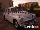 Auto do ślubu -zabytkowa warszawa lub syrena - 3