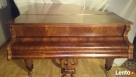 Fortepian Franz Wirth Schuler Bosendorfer-po renowacji 1894r - 2