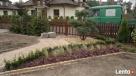 Usługi ogrodnicze-projektowanie, zakładanie 501233483 - 5