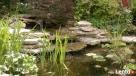 Usługi ogrodnicze-projektowanie, zakładanie 501233483 - 1