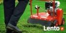 Wertykulacja , Kosznie trawnika - 1