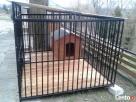 Klatki Klatka Kojce Kojec dla Psów Psa Boks Boksy 24h - 6