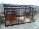Klatki Klatka Kojce Kojec dla Psów Psa Boks Boksy 24h - 7