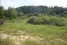 Działkę rolno-budowlana tanio sprzedam - 3