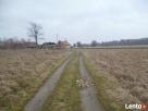 Ładna rolno-bud. w gminie Wola Krzysztoporska Wola Krzysztoporska