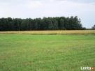 Działka rolno budowlana 7.2ha szer. 145m okolice Garwolina - 1