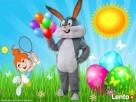 Zając Wielkanocny do wynajęcia Kalisz