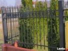 Przęsło ogrodzeniowe Elegance! Nowość, panel ogrodzeniowy Gorlice