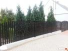 Płot, przęsło, segmenty ogrodzeniowe, duży wybór wzorów - 4