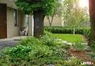 Architektura Krajobrazu, projektowanie ogrodów i tarasów - 4