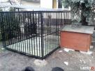 Kojce dla Psów Kojec dla Psa Klatki Klatka Boks Boksy 24h!!! - 6