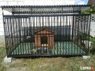 Kojce dla Psów Kojec dla Psa Klatki Klatka Boks Boksy 24h!!! - 1